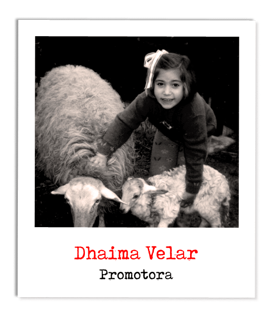 Dhaima-polaroid