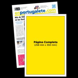 anuncio 5x10 periodico enPortugalete